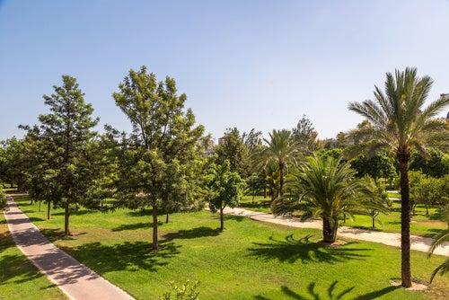 Jardín del Turia en Valencia