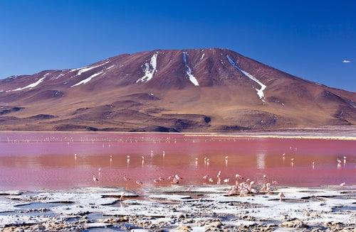 Laguna Colorada de Uyuni