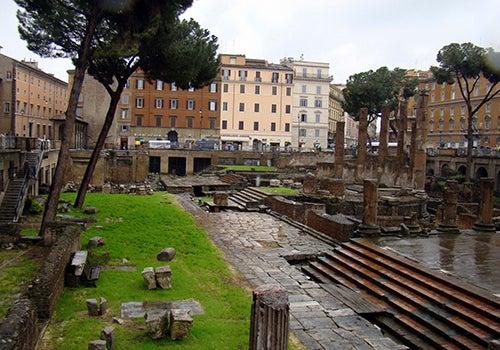 Santuario de los gatos en Roma