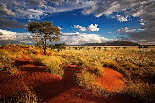 Ecoturismo en las dunas de Namibia