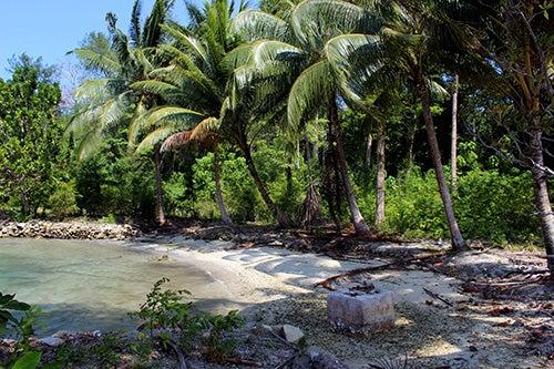 Playa en Islas Salomón