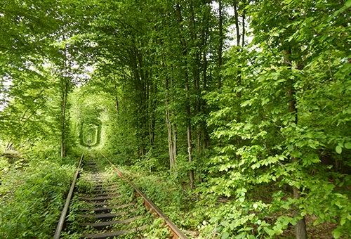 Túnel del Amor en Ucrania
