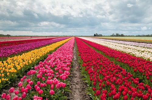 Los 6 sitios más coloridos del planeta