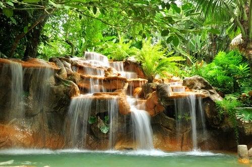 Ecosistema de Costa Rica