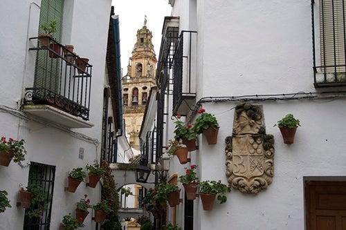 Calleja de las flores de Córdoba