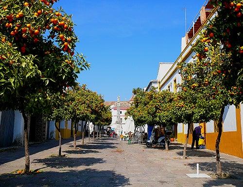 Calles de la judería de Córdoba