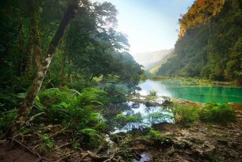 Parque Semuc Champei en Guatemala
