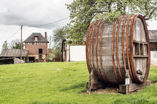 Barril de vino en Cambremer