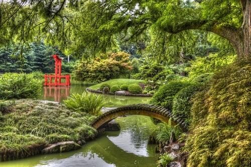 Los 13 jardines bot nicos m s hermosos del mundo mi viaje for Los jardines de la cartuja