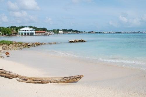 Playa en Utila