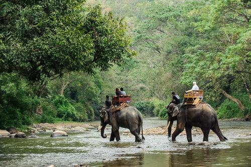 Turistas en Tailandia