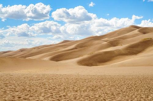 Un viaje increíble por los desiertos