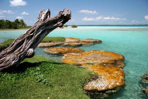 Laguna Bacalar en la Riviera Maya