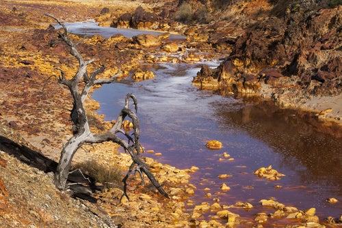 Pasiaje lunar del río Tinto