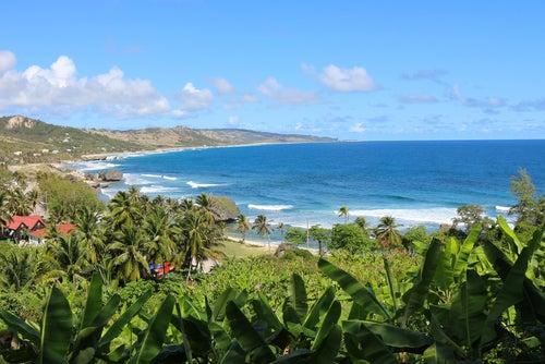 Bahía de Bathsheba en Barbados