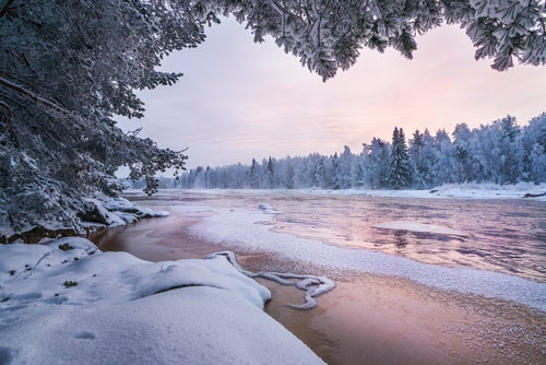 Laponia, tu viaje navideño ideal