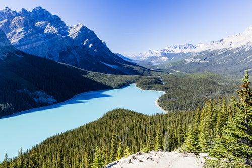 Lago Peyto en Canadá