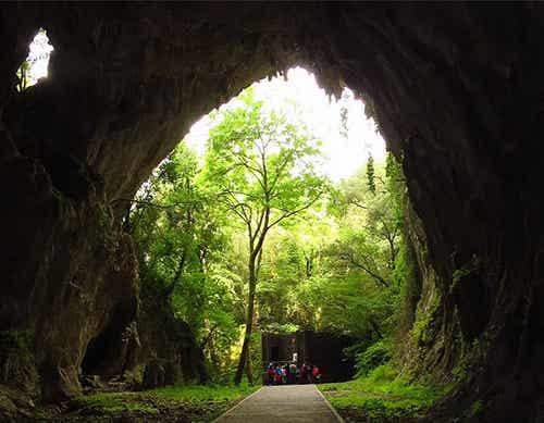 Estas 9 cuevas en Cantabria te harán volver a la Prehistoria