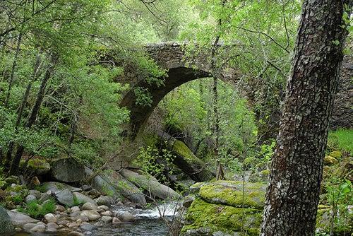 Puente en la Sierra de Francia