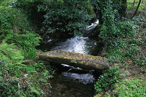 Río Té
