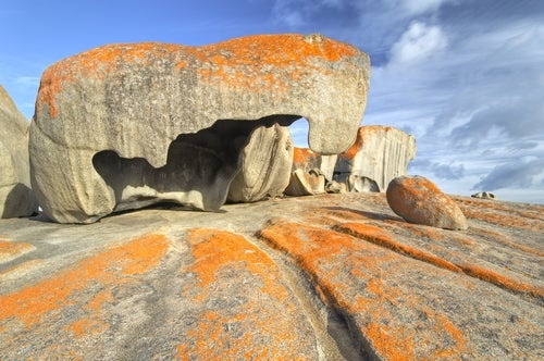 Isla Canguro en Australia
