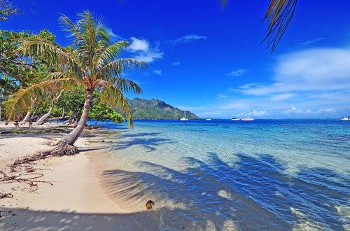 Tahití y sus tesoros
