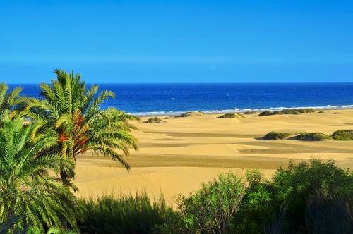 Dunas en las Islas Canarias