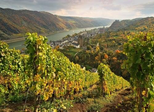 Overwesel en el Rhin romántico