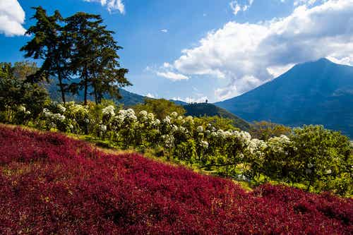 Guatemala y su mundo colorido