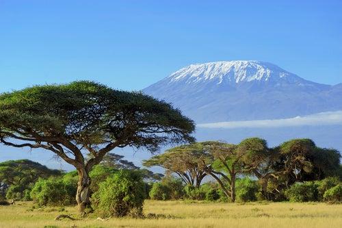 África es mucho más interesante de lo que pensábamos
