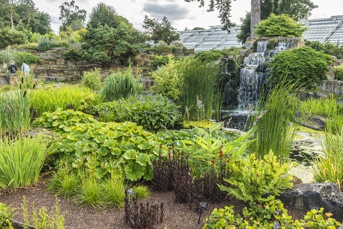 Kew Gardens en Londres