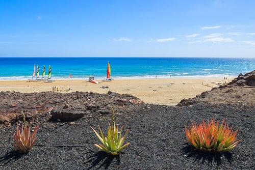 Playa familiar en Fuerteventura