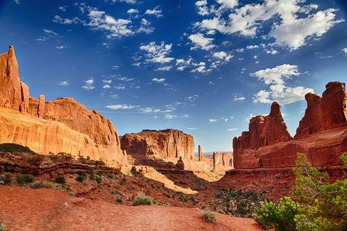 Los 5 desiertos más impresionantes en Estados Unidos