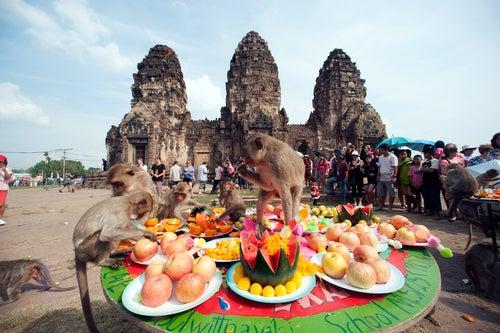 Los 3 festivales más curiosos del mundo