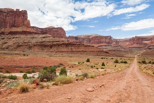 Desierto del Colorado