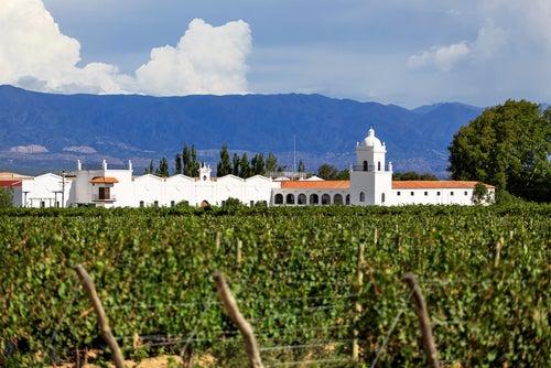 Mendoza, paraíso vinícola latinoamericano