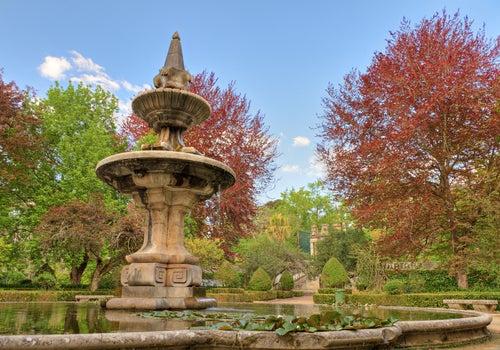 Jardín botánico de Coimbra