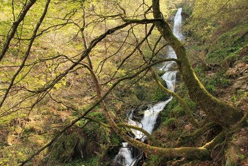 Cascada Xiblu en Asturias