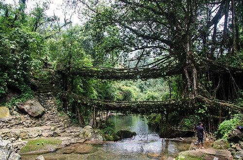 Puentes de Meghalaya