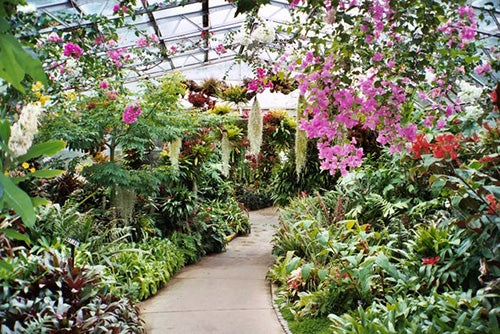Winter Gardens en Aberdeen