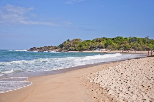 Playa tropical en Recife