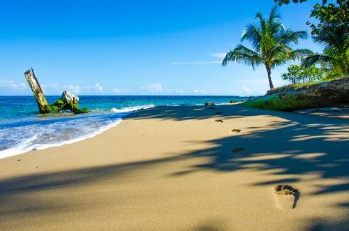 Playa en isla del Coco