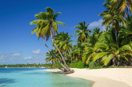 Isla del Coco en Costa Rica, la isla más hermosa del mundo