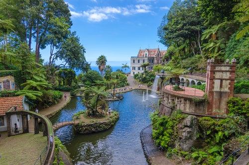 Jardín tropical en Madeira