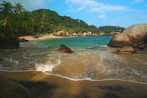 Playa en el Parque Nacional Tayrona