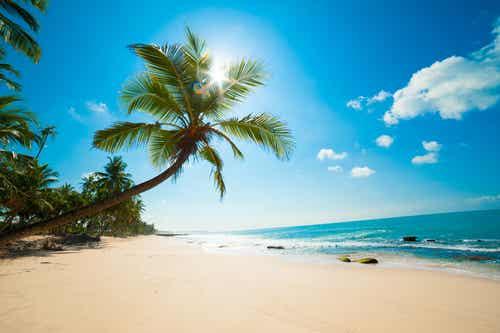 Maldivas y sus estupendas playas