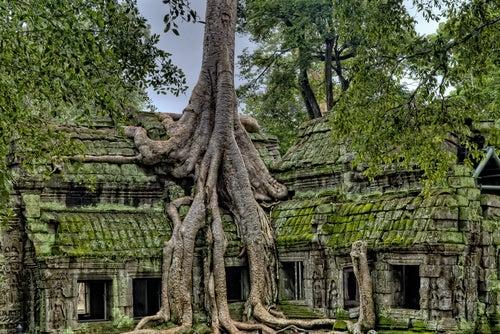 Camboya más allá de los templos de Angkor