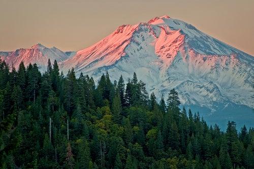 Monte Shasta