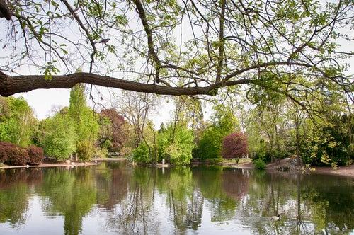 Stadtpark en Viena