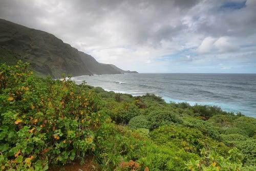 Vista de La Palma